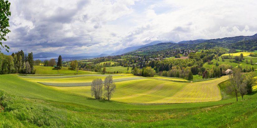 Fondamentali del golf: consigli per migliorare il backswing